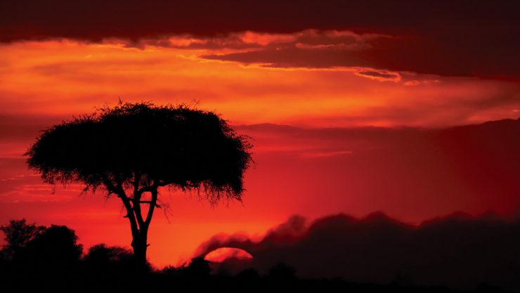 'HAKUNA MATATA' IN TANZANIA