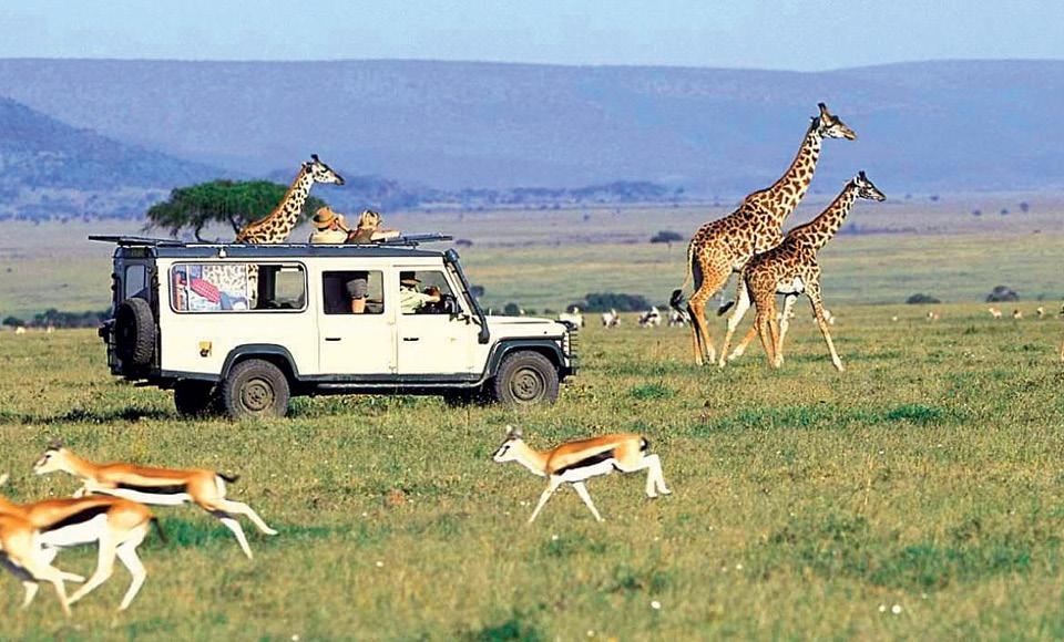 The Excitement Is At Its Peak At The Jeep Safari Raillife Magazine