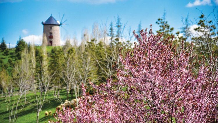 Türkiye'nin İlk Açık Hava Köy Müzesi: Altınköy