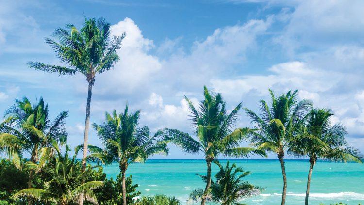 Havalı Miami'nin Bir Başka Yüzü