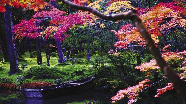 Yeryüzünün En Güzel Bahçeleri